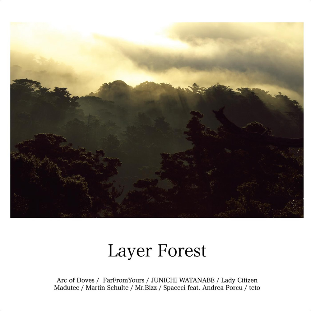 「V.A / Layer Forest」[AY002]