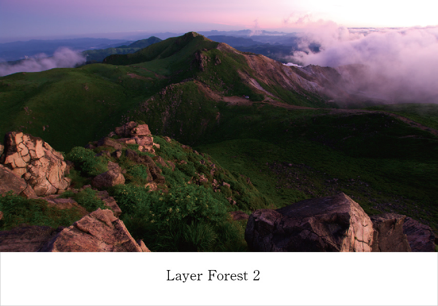 V.A / Layer Forest 2 (AY011)